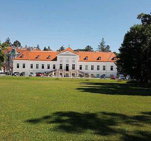 Study Academy Vienna Catle